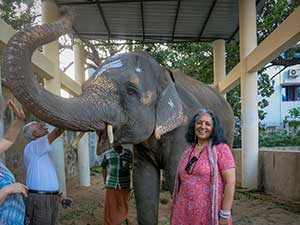 >Visit to Manakula Vinayaka Temple and meet with elephant Lakshmi