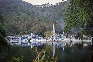Komilla | Vedic Astrology Consultations